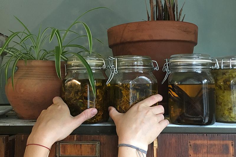 Calendula voor in zeep - Werfzeep