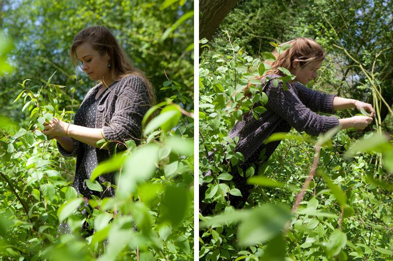 Boszeep -Oogsten in het Wickenburghse bos - Werfzeep