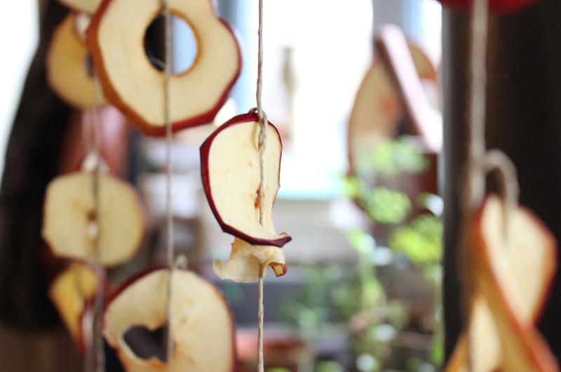 Appelchips maken boven de houtkachel - Werfzeep
