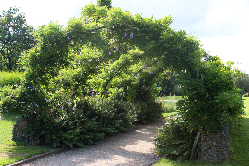 Botanische Tuinen in Utrecht - Werfzeep