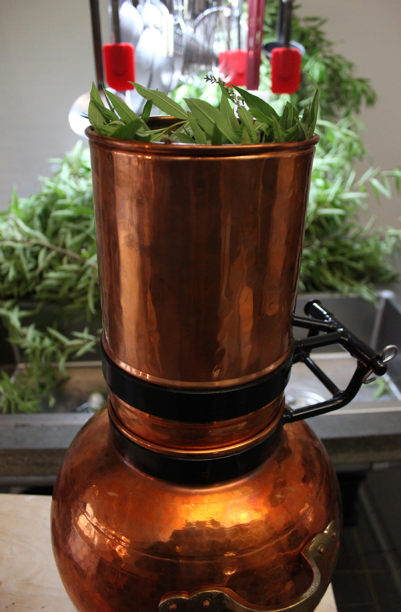 Citroenverbena destilleren - Werfzeep