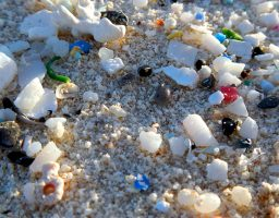 microplastics, part of the plastic soup