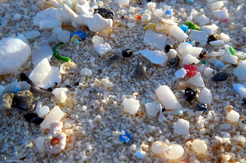 plastic beads, microbeads onderdeel van veel cosmetica - niet van Werfzeep!
