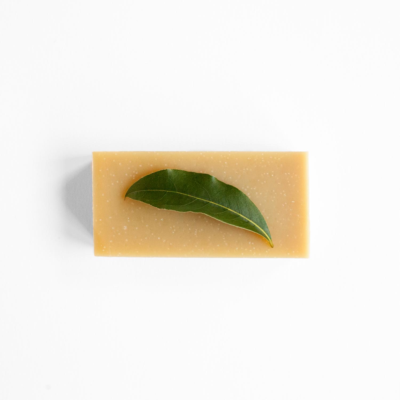solid shampoo van Werfzeep: de honingshampoo
