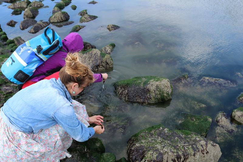 Evelien en Buba oogsten zeewier voor Into The Great Wide Open zeep
