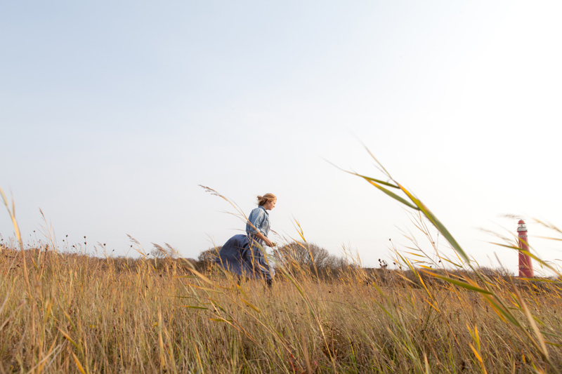 Evelien van Zonneveld raapt watermunt in de duinvallei van Schiermonnikoog - Werfzeep