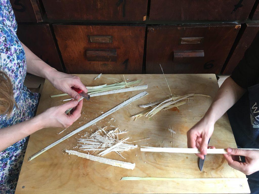 papyrus fileren