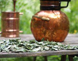 Werfzeep olijfzeep, hydrolaat van olijfblad