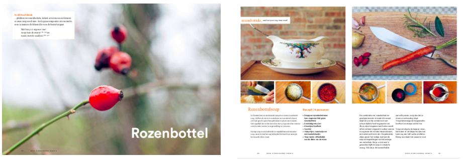 Zeepboek Werfzeep vegan recept review in de Volkskrant