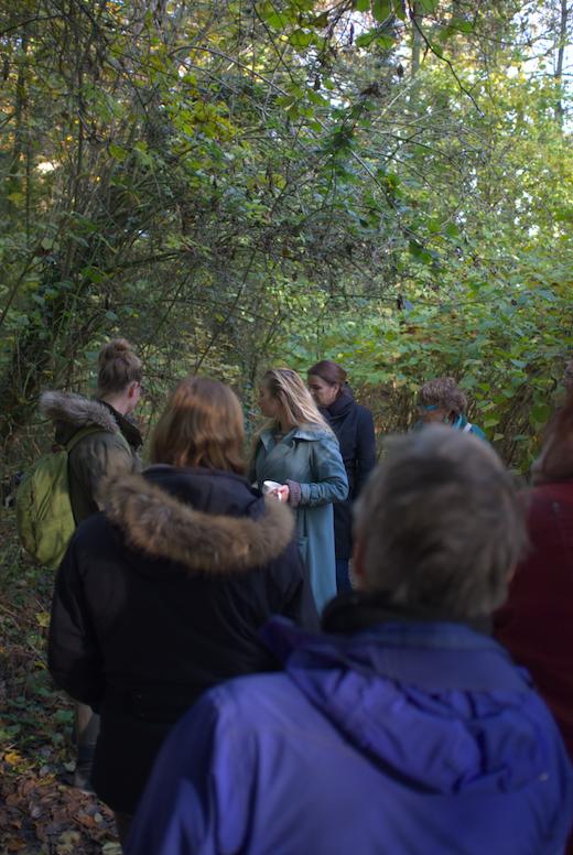 Werfzeep wildplukwandeling in het Wickenburghse bos - Zeepboek
