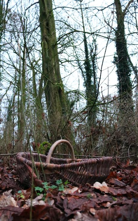 Werfzeep-paardenkastanje-wintercrème-wildpluk- landgoed wickenburgh
