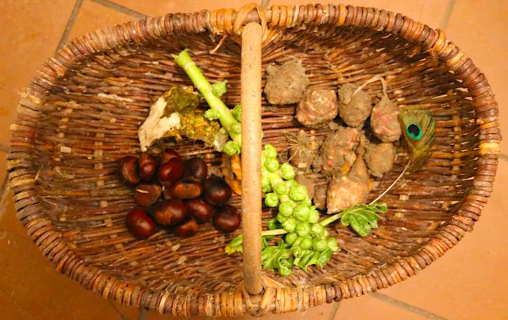 oogst van de dag - wildpluk en moestuinmand - Werfzeep