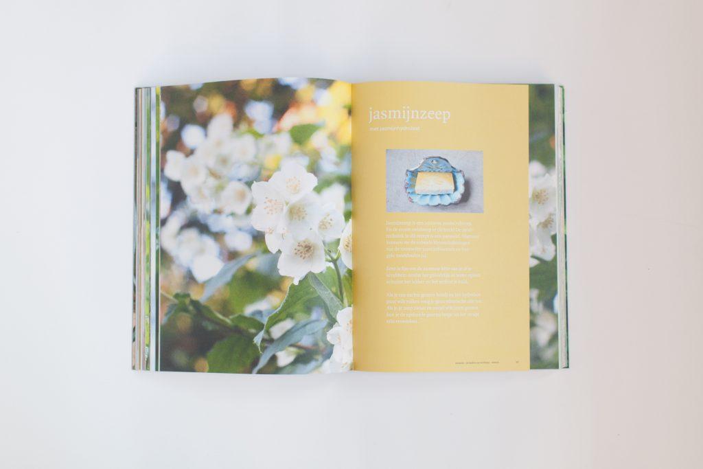 Jasmijnzeep hoofdstuk - Zeepboek - de keuken van Werfzeep