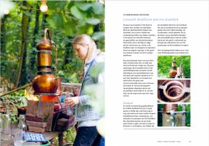 Zeepboek-lavendel-destilleren-1024x712