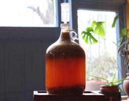 cider maken, recept voor appelciderazijn maken