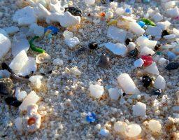 microplastics, part of the plastic soup